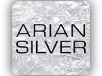 Imagen Cliente ARIAN SILVER